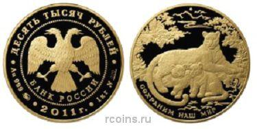 10 000 рублей 2011 года Переднеазиатский леопард