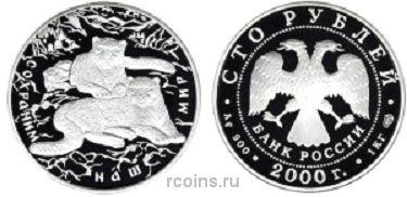 100 рублей 2000 года Сохраним наш мир - Снежный барс