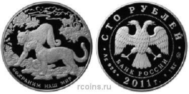 100 рублей 2011 года Сохраним наш мир - Переднеазиатский леопард